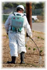 Pest Control Insurance Coverage