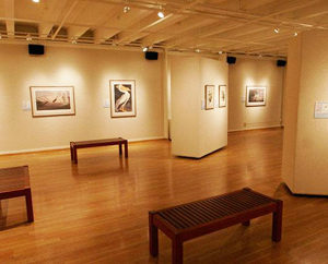 art gallery insurance coverage