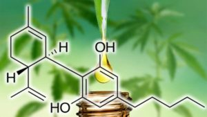 cbd product liability insurance